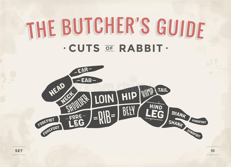 Cut of meat set. Poster Butcher diagram, scheme - Rabbit. Vintage typographic hand-drawn rabbit or hare silhouette for butcher shop, restaurant menu, graphic royalty free illustration