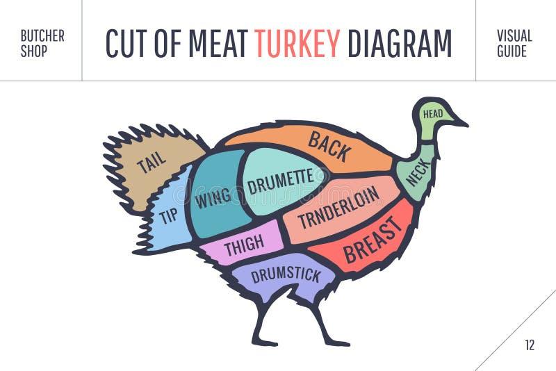 Cut of meat set. Poster Butcher diagram, scheme - Turkey. Colorful vintage typographic hand-drawn turkey silhouette for butcher shop, restaurant menu, graphic royalty free illustration