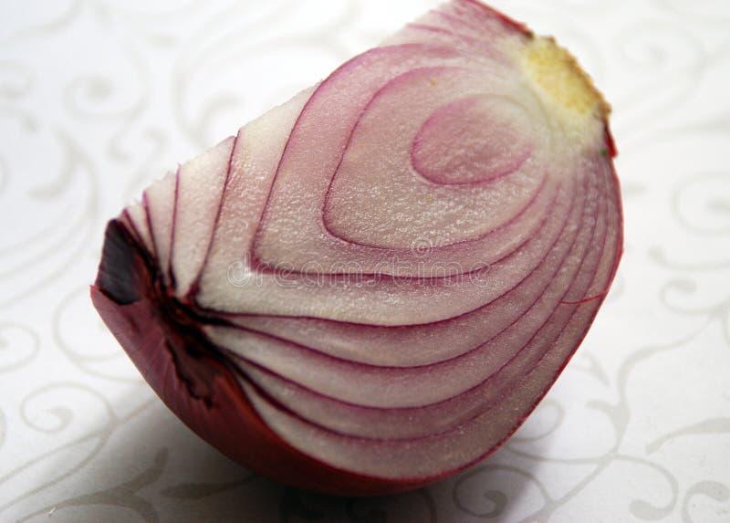 Download Cut onion-macro stock photo. Image of organic, fleshy - 3233972