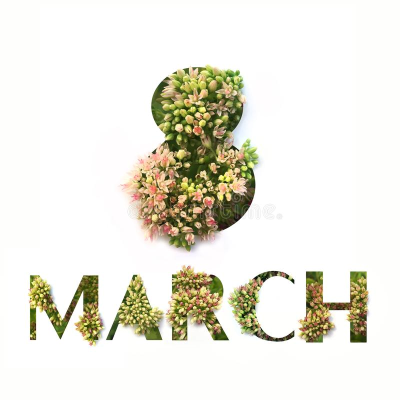 Cut out words 8 MARCH with growing plant inside. Spring greeting card concept.  royalty free stock photo