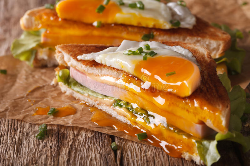Cut sandwich Croque Madame closeup of paper. horizontal royalty free stock photography