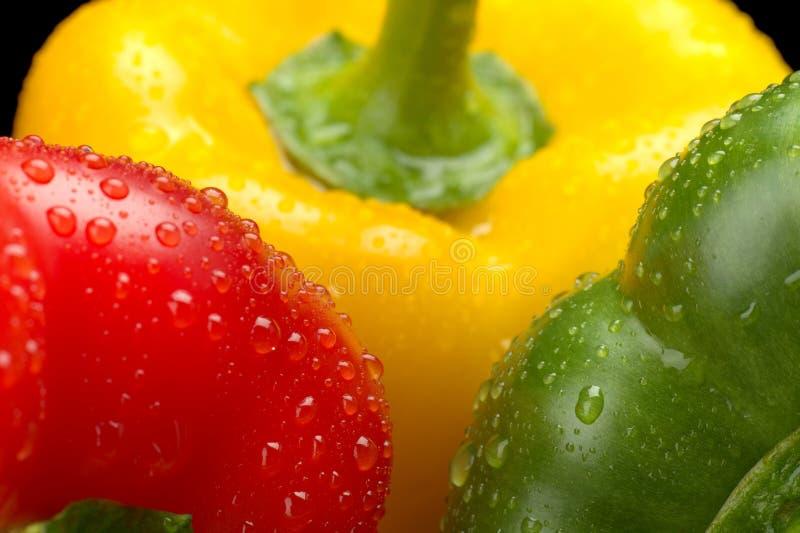 Cut shot green, red, yellow bell pepper background with water drop. Cut shot of green, red, yellow bell pepper background with droplets of water royalty free stock photos