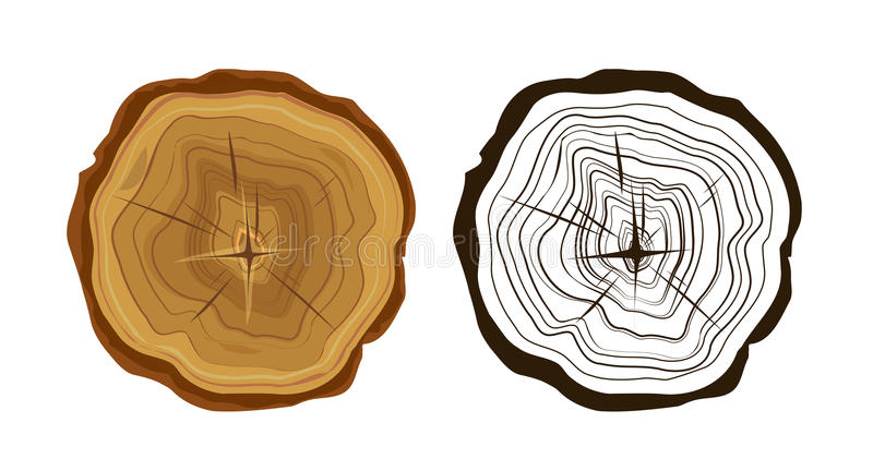 Cut tree icons, tree rings illustration. Color and monochrome vector illustration