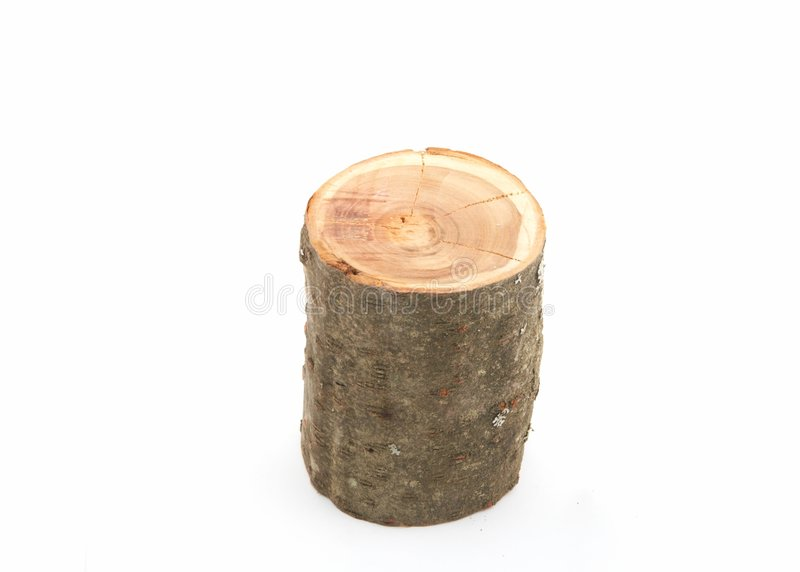 Cut Of A Tree Trunk Royalty Free Stock Photos