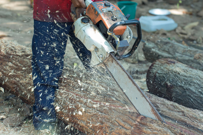 Cut wood with jigsaw in workshop stock photo