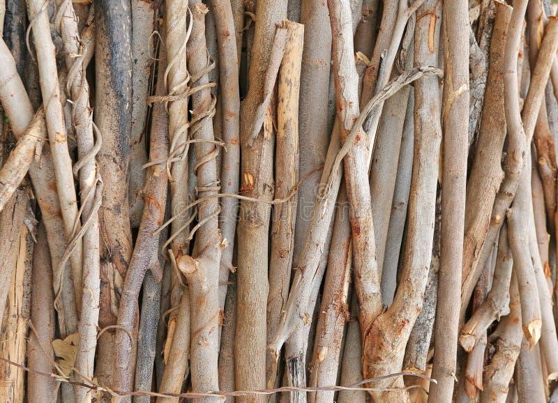 Cut wood stump log. Pile of cut wood stump log royalty free stock image