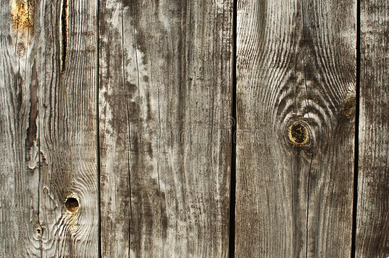 Cut wood and wooden structure stock images