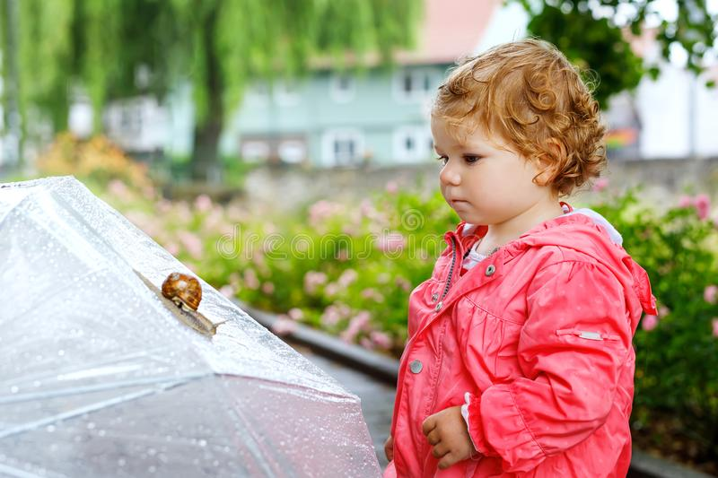Cute adorable baby girl discovering snail on a walk. Beautiful curly toddler child having fun on rainy day. With big. Umbrella, child in waterproof clothes royalty free stock images