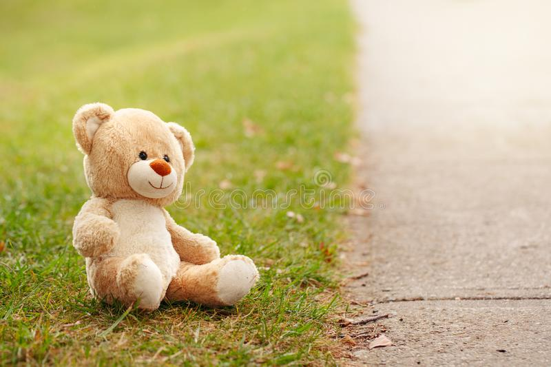 Cute adorable lost abandoned soft plush stuffed children toy teddy bear sitting on ground street road. In park outdoor. Lost lonely toy outside. Concept of royalty free stock photos