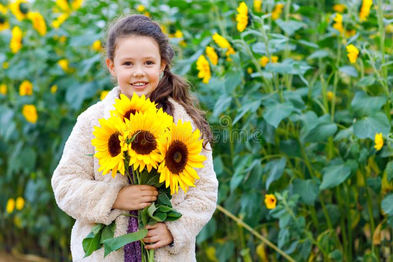 Cute adorable school girl on sunflower field with yellow flowers. Beautiful preschool child with blond hairs. Happy stock photo