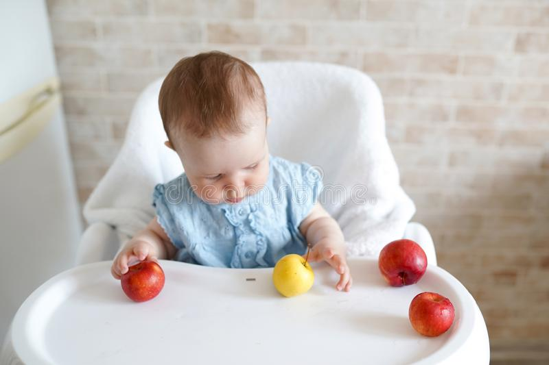 Cute adorable Caucasian child kid girl sitting in high chair eating apple fruit. Everyday lifestyle. Real authentic sweet home stock photo