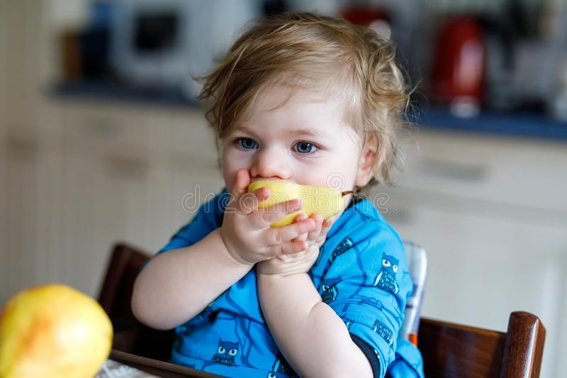 Cute adorable toddler girl eating fresh pear . Hungry happy baby child of one year holding fruit. Girl in domestic stock image