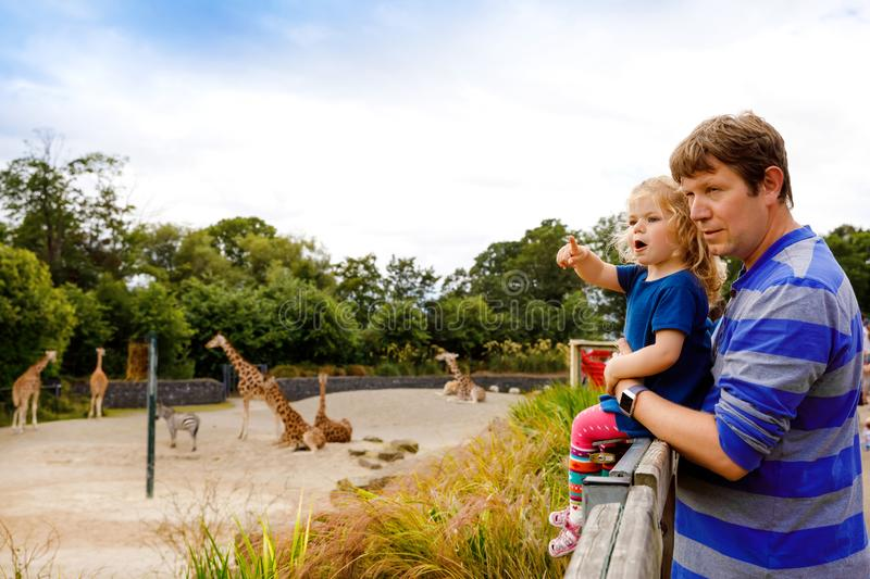 Cute adorable toddler girl and father watching and feeding giraffe in zoo. Happy baby child, daughter and dad, family. Having fun together with animals safari stock photography