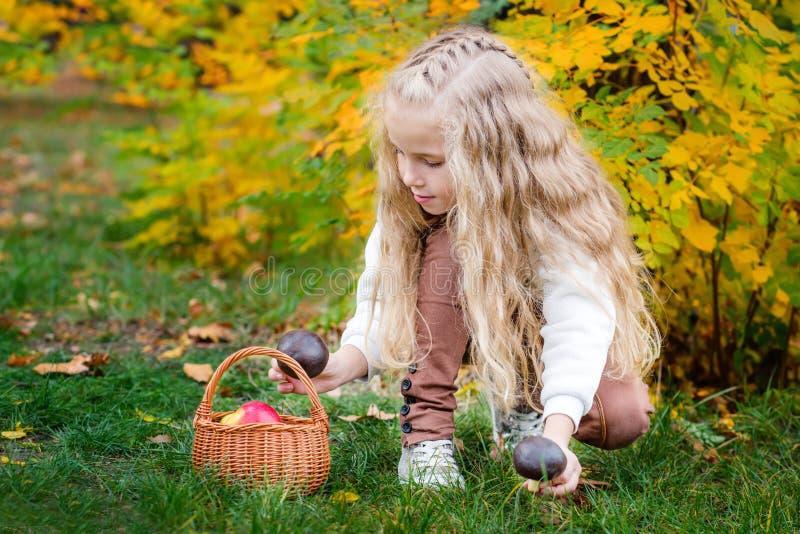 Cute adorable white Caucasian blonde preschool little girl picking fresh edible mushrooms in wicker basket royalty free stock photo