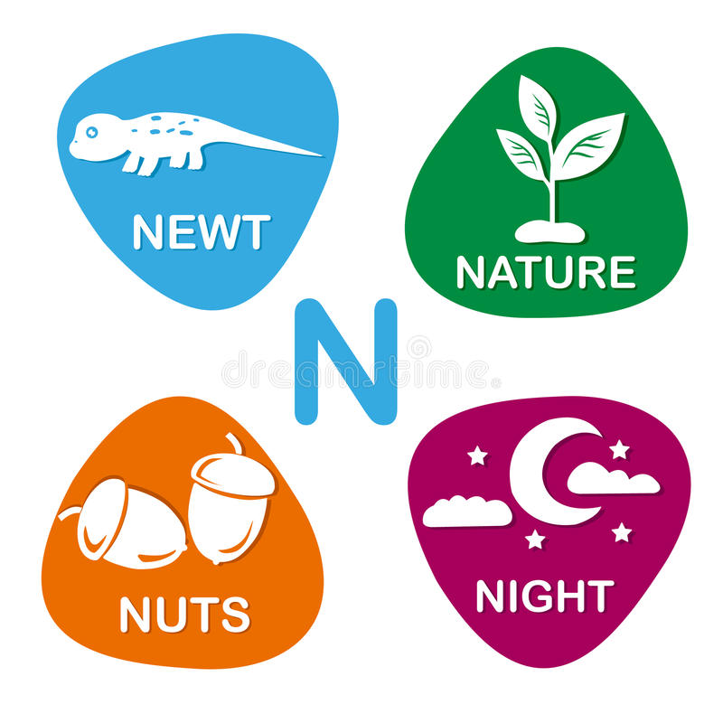 Cute alphabet in vector. N letter for newt, nature, nuts and night. Alphabet design in a colorful style vector illustration