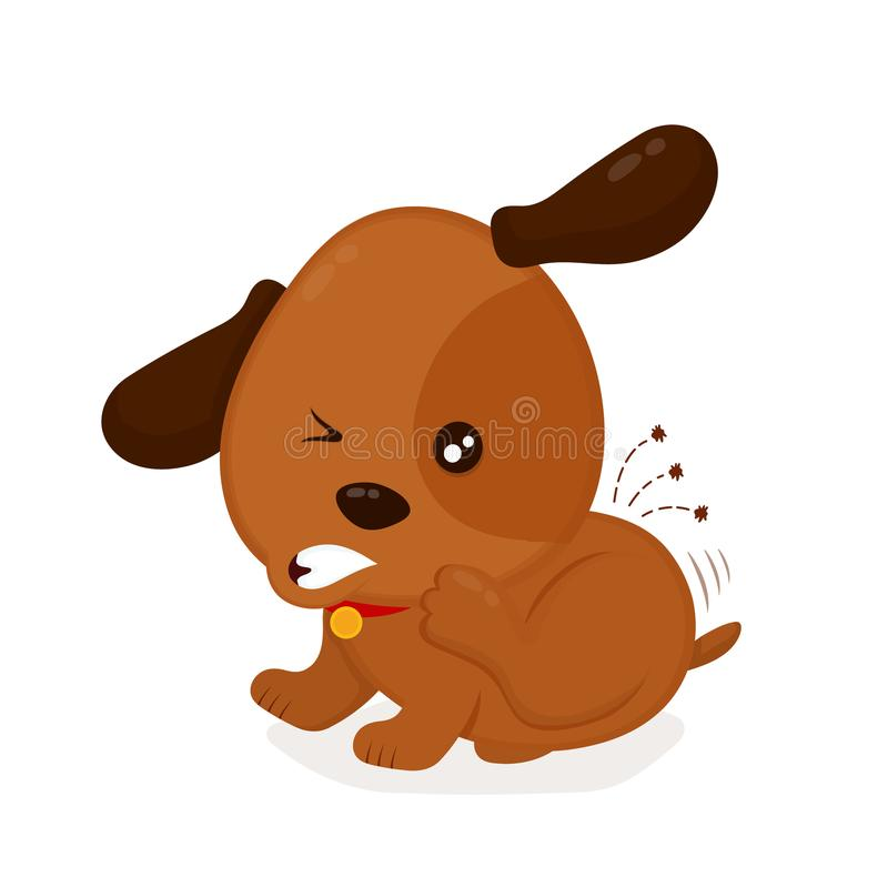 Cute angry itchy dog scratches fleas off stock illustration