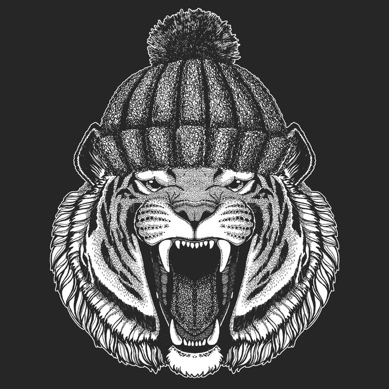 Cute animal wearing knitted winter hat Wild tiger Hand drawn image for tattoo, emblem, badge, logo, patch, t-shirt. S stock illustration