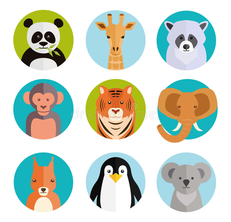 Cute animals in colored round badges vector illustration