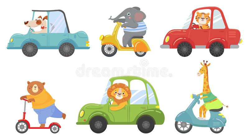 Cute animals on transport. Animal on scooter, driving car and zoo travel cartoon vector illustration set stock illustration