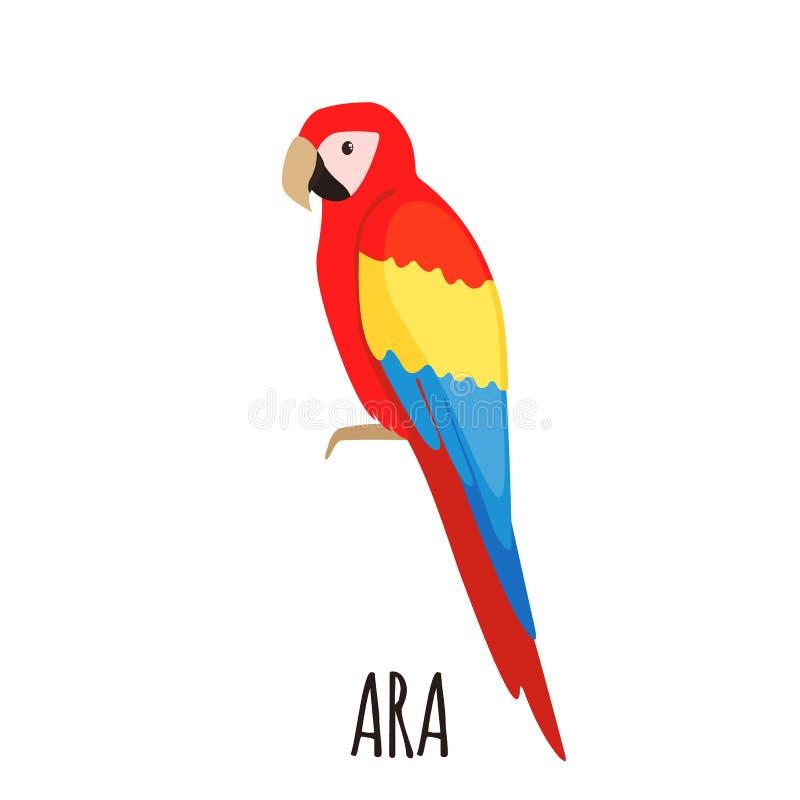 Cute Ara parrot in flat style stock illustration