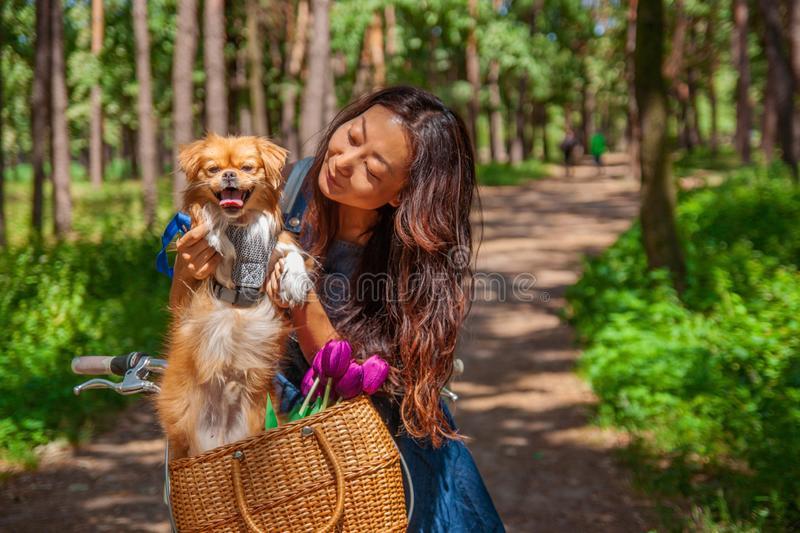 Cute asian girl with little dog walking in park. Woman sitting on green grass with dog - outdoor in nature portrait. Pet, domestic royalty free stock photo
