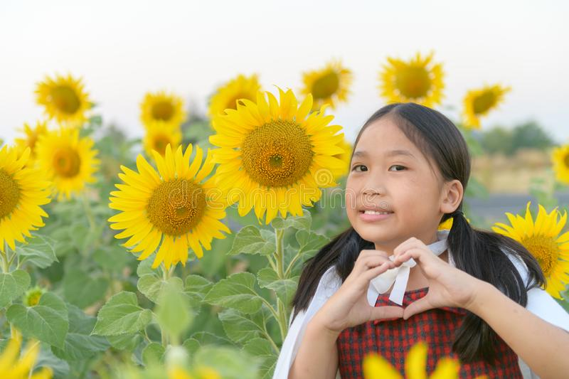Cute asian girl showing heart sign symbol and smile with sunflower stock images