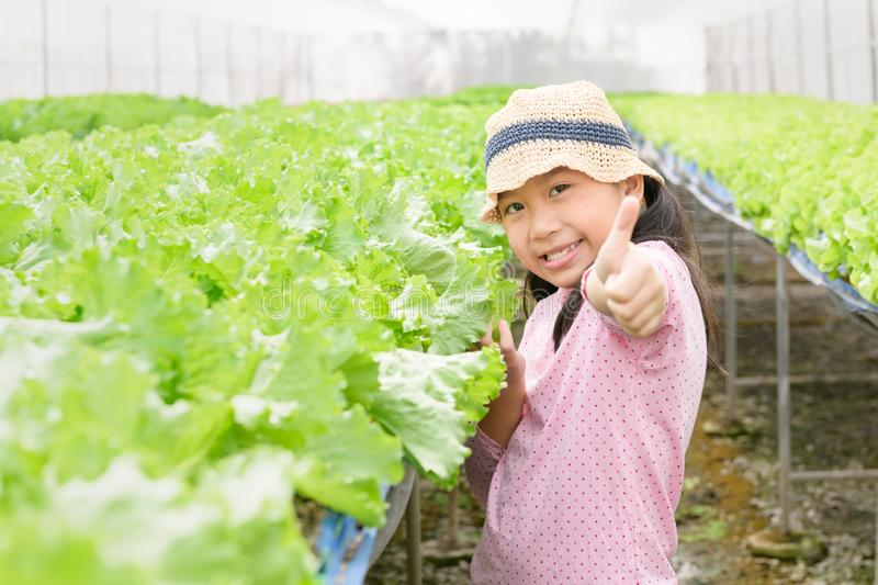 Cute asian girl showing thumb up at organic vegetable farm stock photography