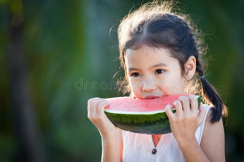 Cute asian little child girl eating watermelon fresh fruit. In the garden royalty free stock photography