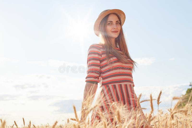 Cute attractive young girl with straw hat and striped stylish dress, posing on wheat field during sunset, enjoying beautiful stock photos