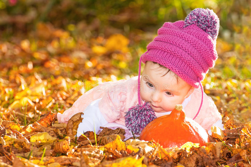 Cute autumn baby girl stock images