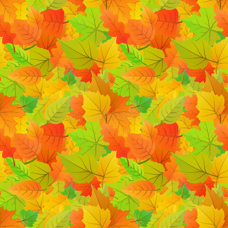 Cute autumn leaves from different kind of trees, seamless pattern royalty free illustration