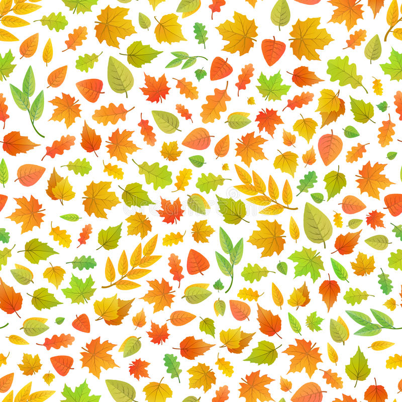Cute autumn leaves from different kind of trees on white, seamless pattern royalty free illustration