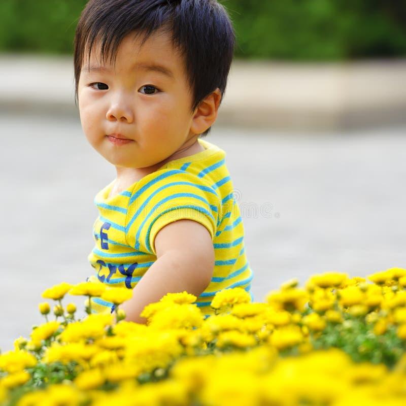A cute baby stock photos