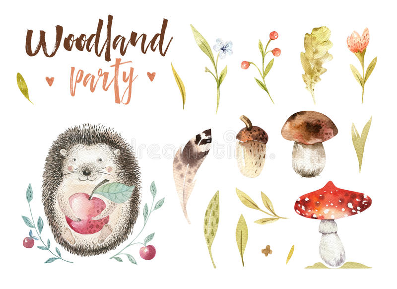 Cute baby animal nursery isolated illustration for children. Watercolor boho forest drawing, watercolour, hedgehog image stock illustration