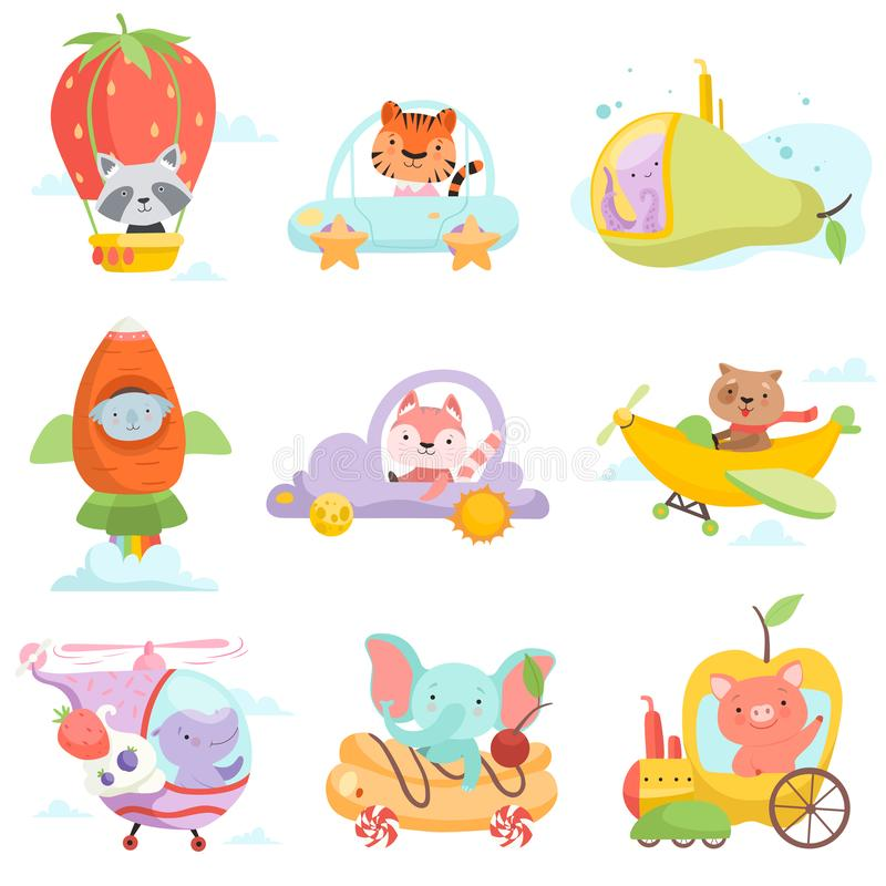 Cute Baby Animals in Transport Set, Raccoon, Tiger, Octopus, Koala Bear, Fox, Dog, Hippo Elephant, Pig Riding Cars. Flying By Airplanes Vector Illustration on royalty free illustration