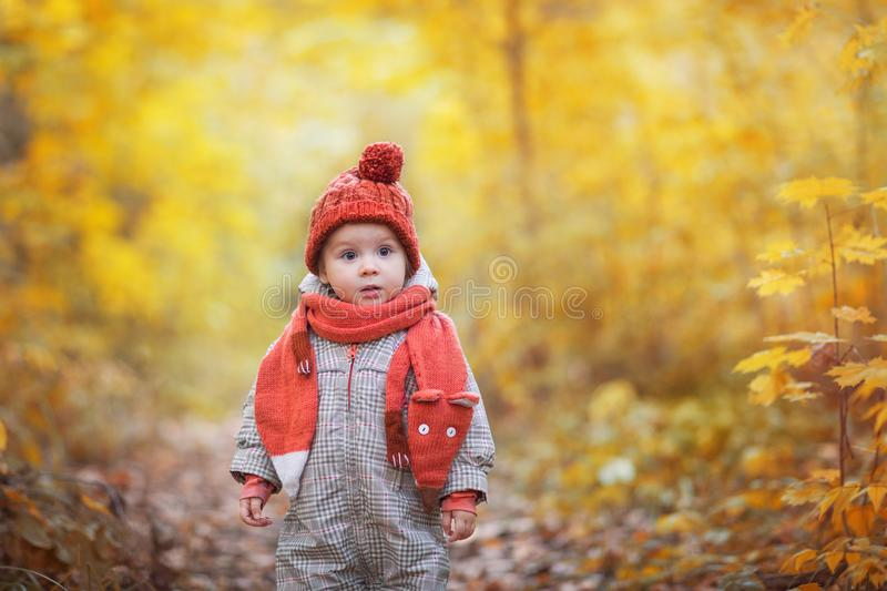 Cute baby in autumn clothes. child in knitted hats and scarf. Orange animal is fox royalty free stock photography