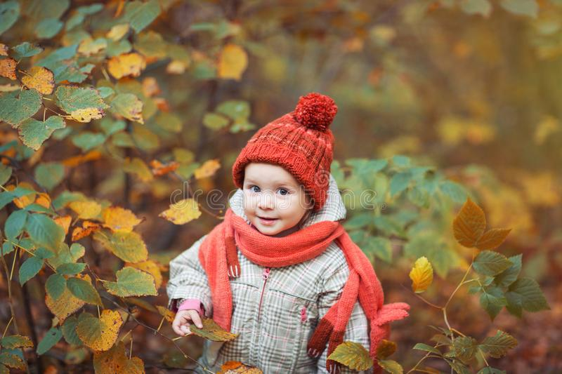 Cute baby in autumn clothes. child in knitted hats and scarf. Orange animal is fox royalty free stock photos