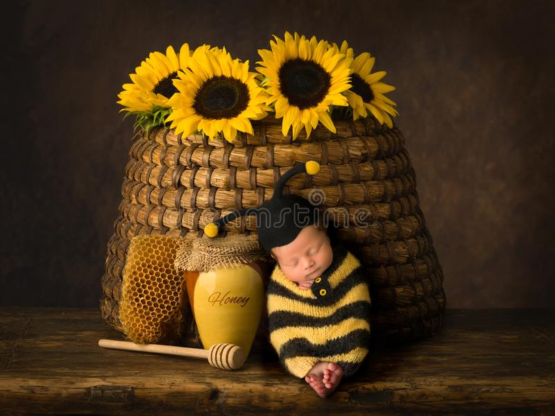 Baby in bee outfit sleeping in beehive. Cute baby in bee outfit sleeping against antique beehive stock photography