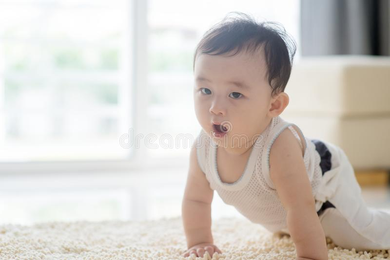 Cute baby boy crawling on carpet. stock photography