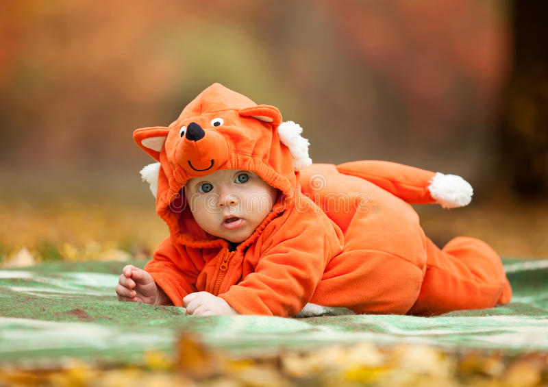 Cute baby boy dressed in fox costume stock images