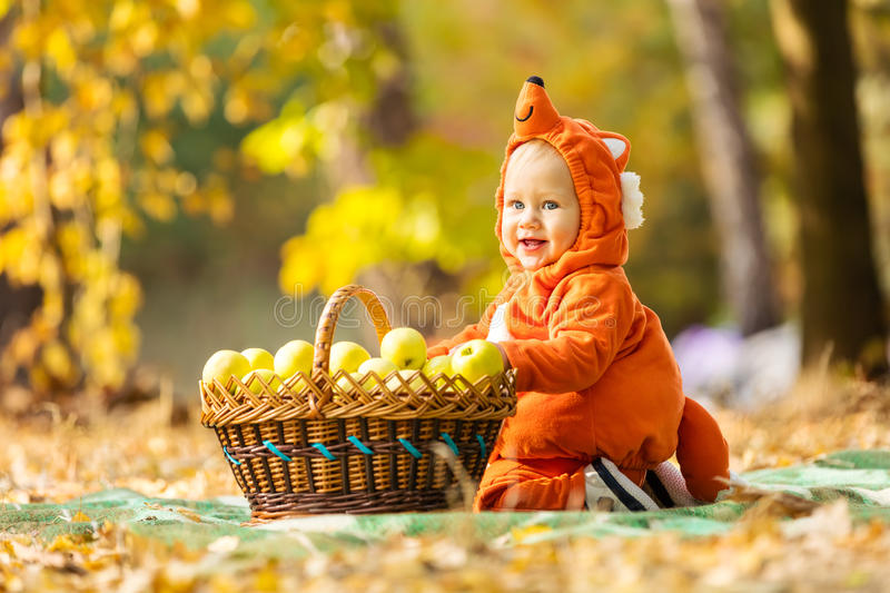 Cute baby boy dressed in fox costume sitting by basket with apples. In autumn park stock photos