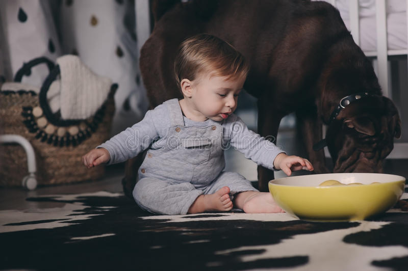 Cute baby boy eating cookies and playing at home. Candid captute in real life interior stock images
