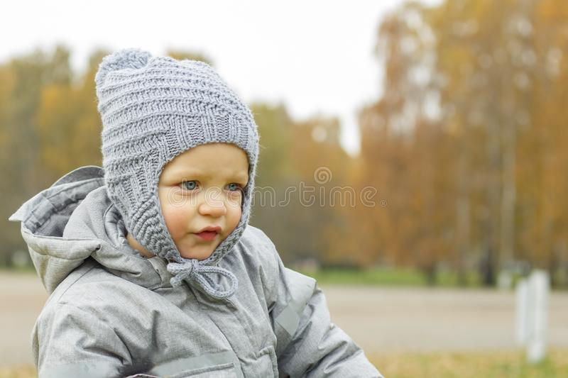 Cute baby boy in hat outdoor. Autumn shoot. Cute toddler profile portrait. Copy space. stock photo