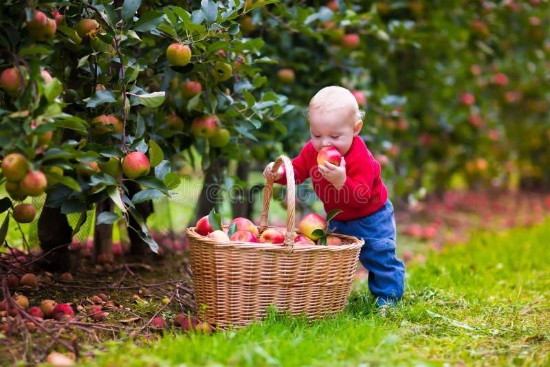 fruit farm spielen