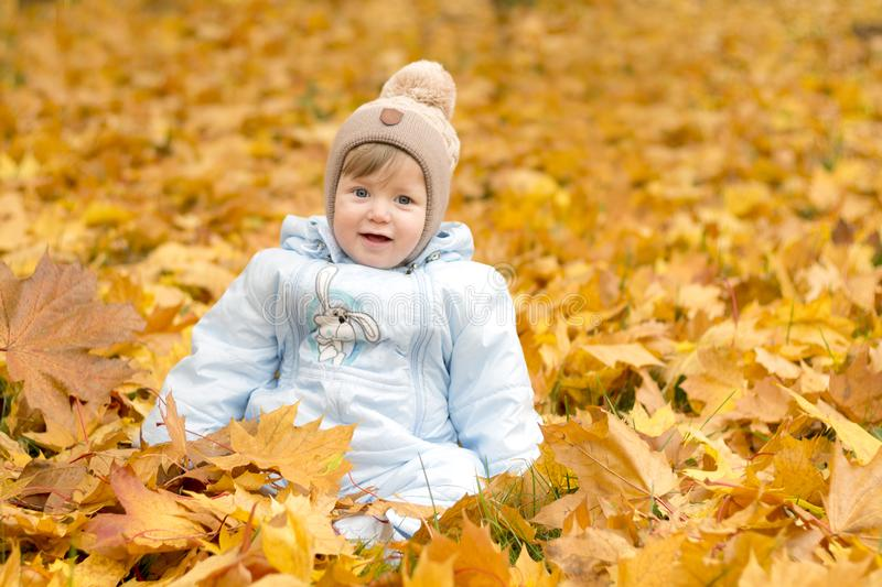 Cute baby boy playing in autumn park. Funny kid sitting among yellow leaves. Adorable toddler with oak and maple leaf stock photo