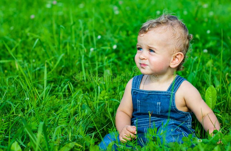 Baby boy sitting on green grass in park stock image