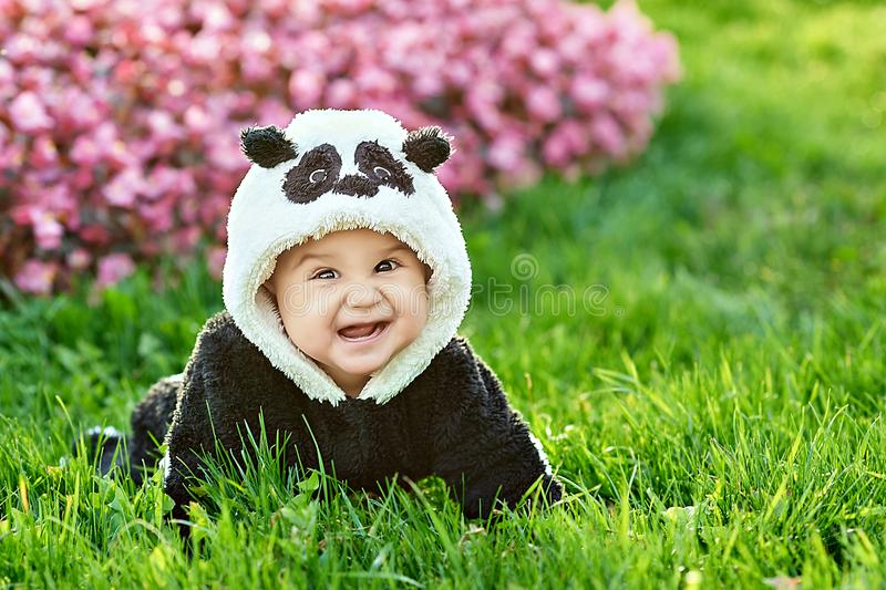 Cute baby boy wearing a Panda bear suit sitting in grass and flowers at park. Cute baby boy wearing a Panda bear suit sitting in grass and flowers at park royalty free stock photos