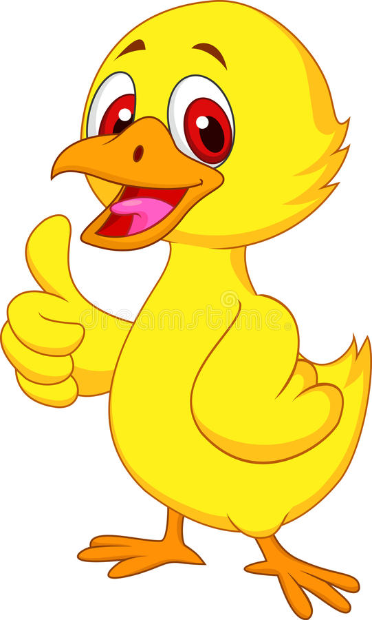 Cute baby chicken cartoon with thumb up vector illustration