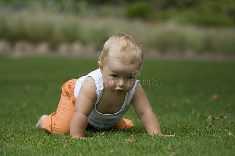 Cute baby crawling on grass