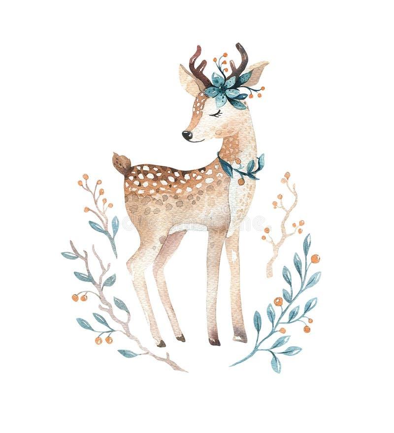 Cute baby deer animal for kindergarten, nursery isolated illust vector illustration